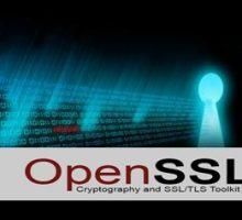 OpenSSL多个漏洞威胁