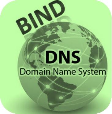 ISC BIND 9 DoS漏洞技术分析与防护方案
