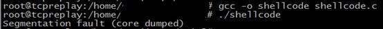 shellcode13