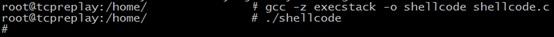 shellcode17